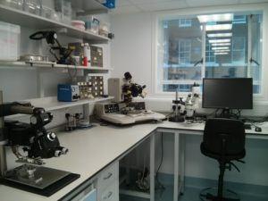 My Lab 2